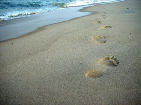 footprints_beach-461x342